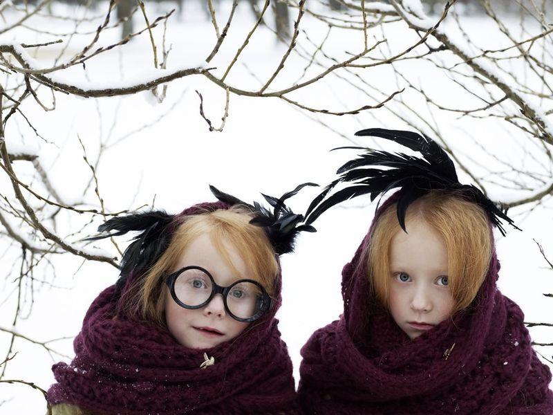 _bg_snow_birds1